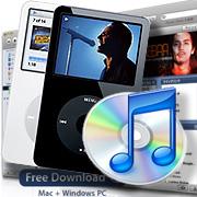 iPod + iTunes