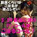 新潟小春祭り2008春