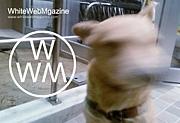 WhiteWebMagazine