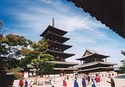 日本で生きる、日本で考える