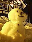 SNOW BOARD 2010