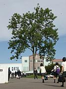 北海道日本大学高等学校