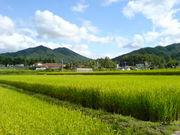美しい風景を写真に残したい!