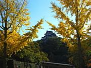 和歌山の歴史と文化