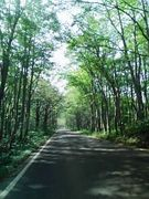 ‡Country Road‡