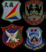 空自支援飛行隊(班)