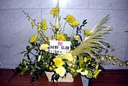 ◆河野弘樹◆お花&色紙企画◆