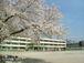 可児市立土田小学校1998年度卒