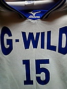 ☆G−WILD☆的バスケット