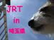JRT��in����̸�