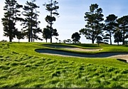 Chamberlain Golf Club(CGC)