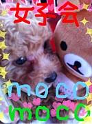 神戸☆女子会☆〜moco・moco〜