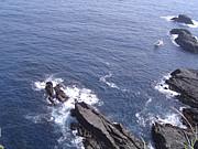 越前海岸の釣り