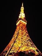 東京タワー吟行&エア吟行。