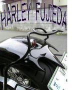 HARLEY FUJIEDA