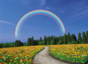 キングダムオブハッピネスの虹