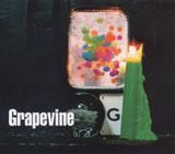 光について / GRAPEVINE