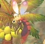 甲虫種が好き
