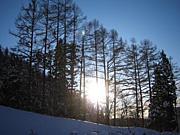 Snowサークル 運営者の会