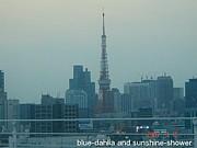 日曜学級in東京