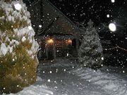 冬嫌いな雪好き