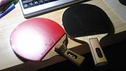阪神間で卓球を!「とあるTTC」
