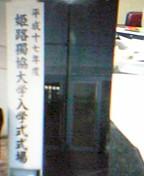 姫獨大♡2005年入学