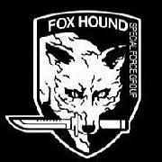 Fox Hound(社会人野球)