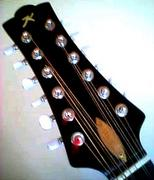 12弦など変態多弦楽器