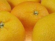 オレンジデイズ☆あざーっす