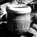 工藤冬里の陶芸
