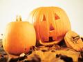 幼児英語circle/Little Pumpkins
