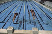 水泳 Take your marks...