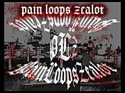 Pain Loops Zealot