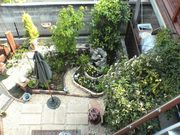 ちーむ家庭菜園