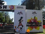 マラソンサークル☆HIBISCUS☆