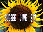 ■■■SUGEEE LIVE 817■■■