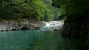 Chubu English Adventure Camp