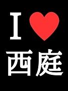 西脇(・∀・)庭球