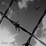 セレクトショップ Birdseye