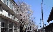 宇部高校◇関西組◇