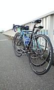 荒川で自転車を楽しむ会