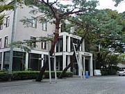 2008年度☆成城大学新入生