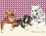PAUL&JOE