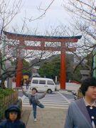 鶴岡八幡宮が好き!!