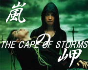 *THE CAPE OF STORMS*
