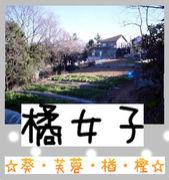 ☆橘女子☆葵・芙蓉・楢・樫☆