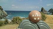 LOVE奄美大島