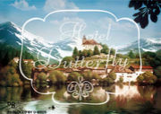 D-BROS 「HOTEL BUTTERFLY」
