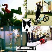 Barrio19